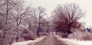 Muddy country road in winter